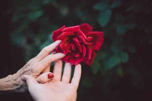 nona ruke